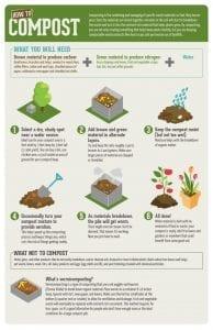 Compost infograpgic