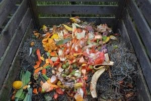 composting for children