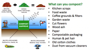 What can you compost?
