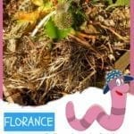 Florance the Earthworm