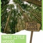 Three Little Woods