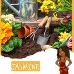 Jasmine - Jakes Best Friend