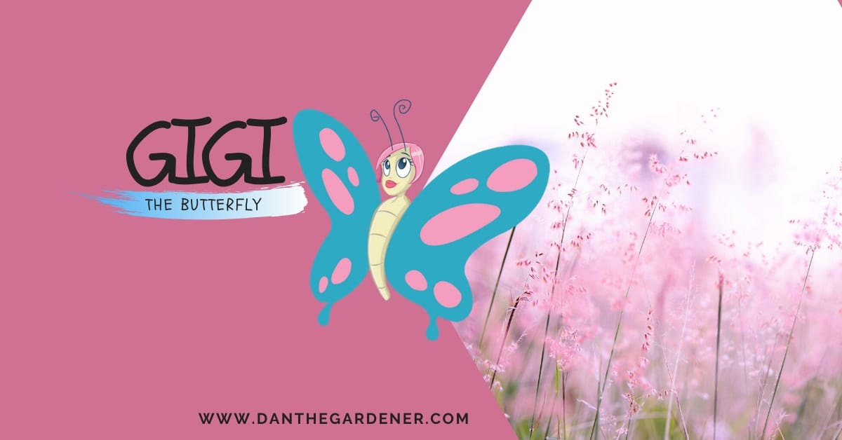 Gigi The Butterfly