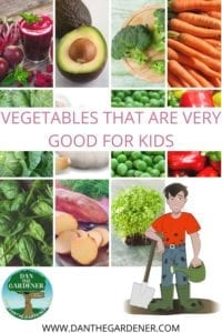 vegetables that are good for kids