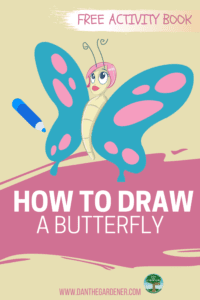 How To Draw A Butterfly